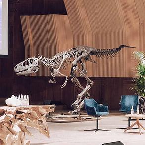 Albertosaurus Dinosaur Granada Gallery