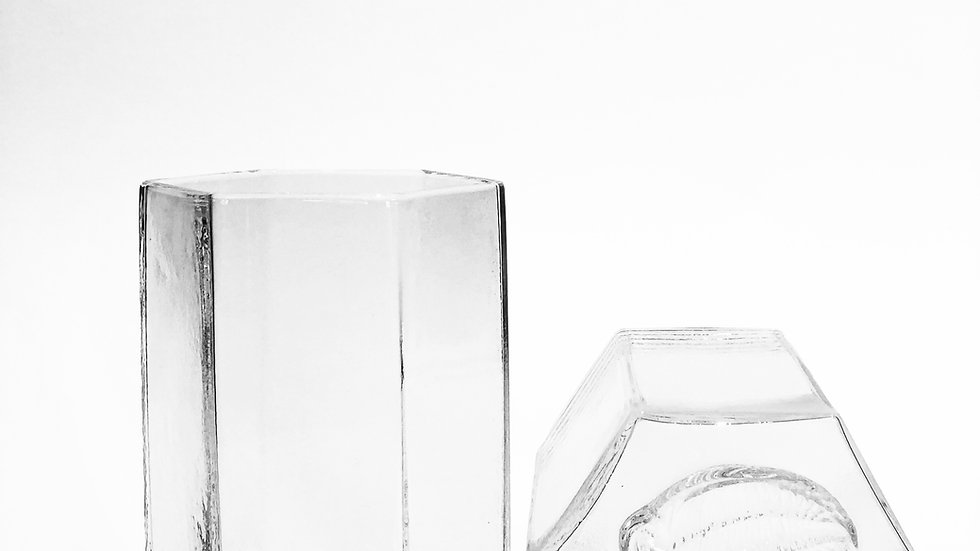 Trilobite Tumbler Glass