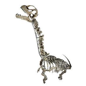 Camarasaurus Dinosaur Granada Gallery