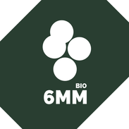 6mm BB's - Biodegradable