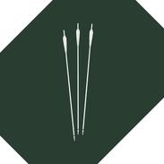 Archery Bow Arrows