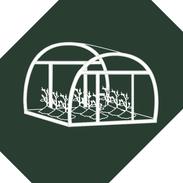 Planting & Growing
