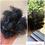 Thumbnail: TAMANU HAIR BUTTER
