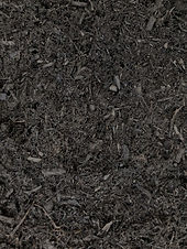 LANDSCAPERS BLACK.jpg 2.jpg