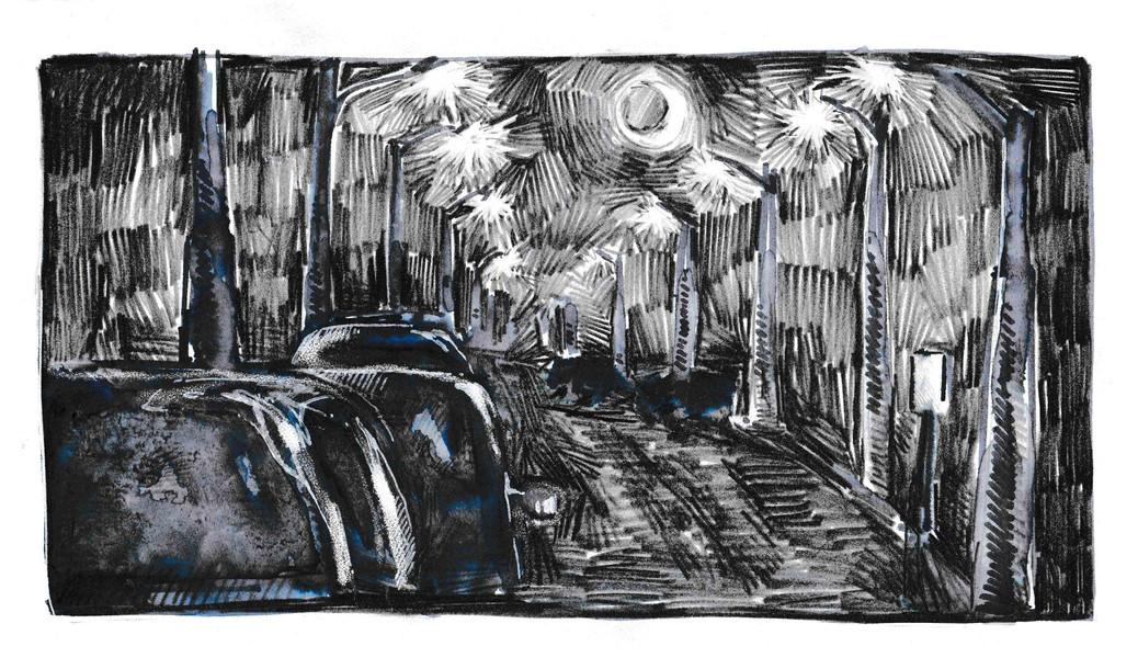 """My Old Pal Venus, Graphite & ink, 8.5x11"""" $35"""