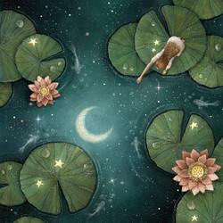 The Lotus Moonlight
