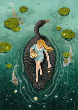 Upon The Black Swan