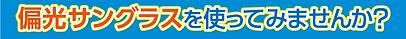 サングラス_偏光サングラス.png