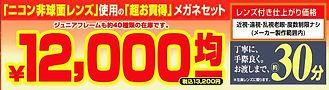 年末チラシ 12000円 題名.jpg