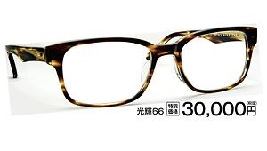 光輝66 ¥30,000円(税抜)