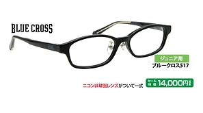 ブルークロス517 ¥14,000円(税抜)