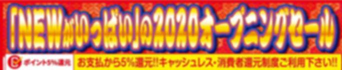 2020 daimei .jpg