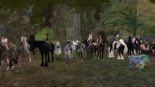 Imagine Hall Equestrian Center