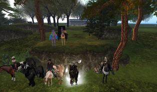 Toor Equestrian