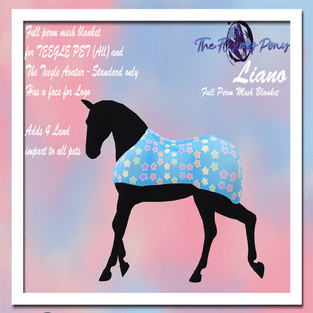 The Flying Pony - Star Galore/Liano Blanket