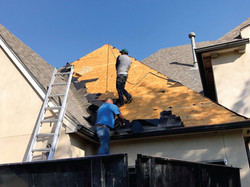 Roofing Contractor Peal Off