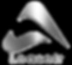 Logo-Leaseir.png