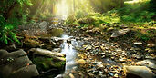 Mountain-River-Stream-Trees-Background-c
