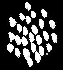 Popup Button White transparent backgroun