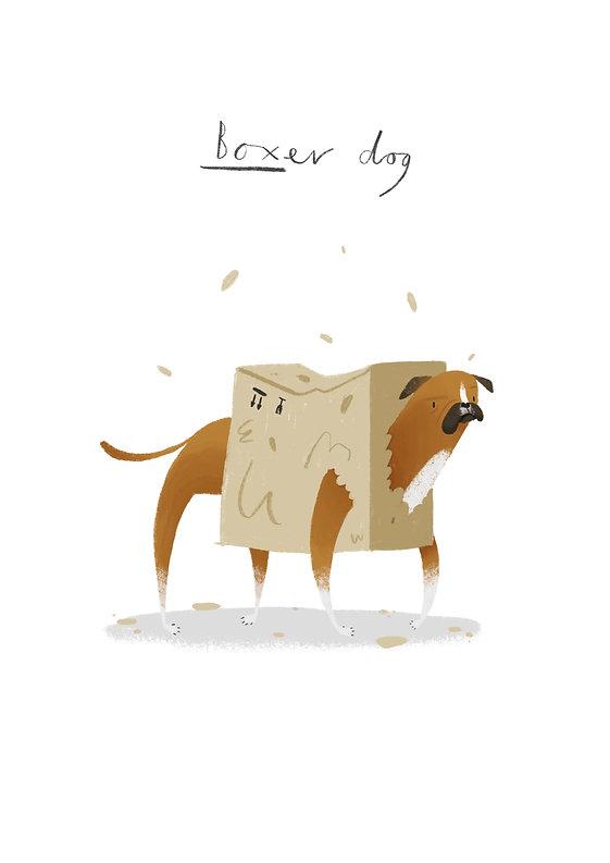 BOXer dog.jpg