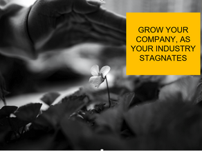 Grow your company, as your industry stagnates