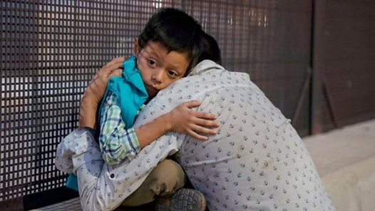 migrant family reunification dna database dna bridge puente adn