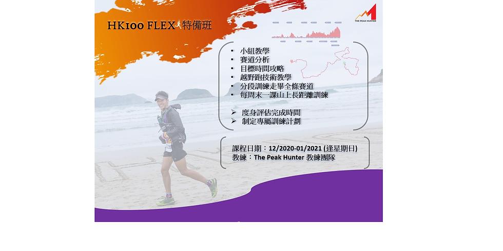 HK100 Flex 特備班
