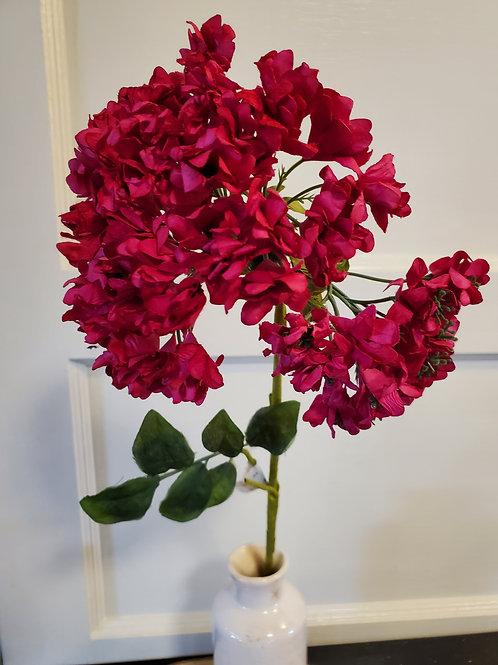 Fuchsia Hydrangea Stem