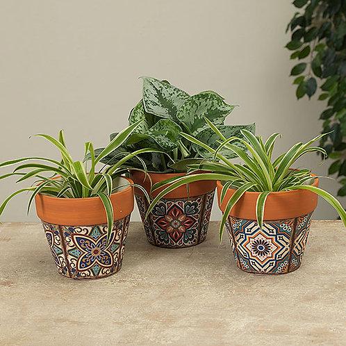 Mediterranean Planters