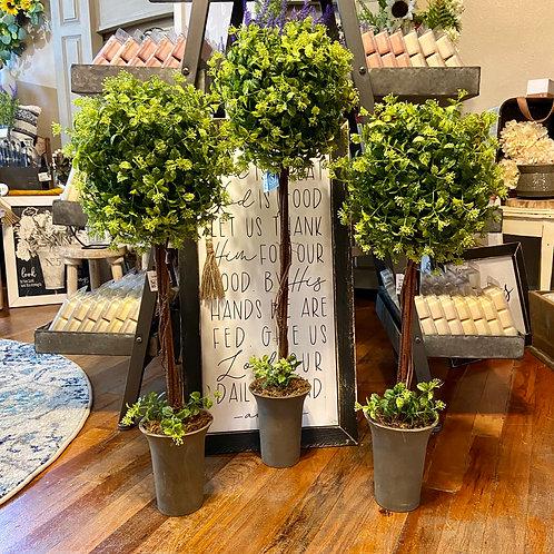 Boxwood Berry Topiary
