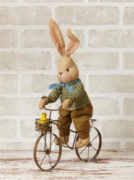 Bicycling Bunny