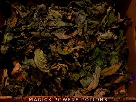 Box of Kratom Leaves