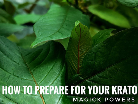 How to Prepare for your Kratom Plant