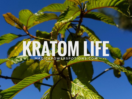 Kratom Life #growyourown