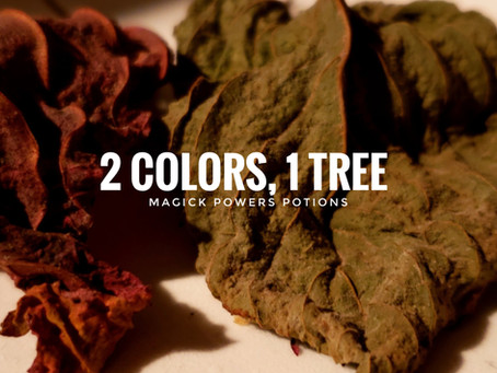 2 Colors, 1 Tree