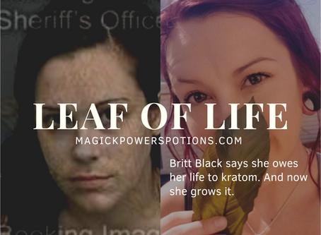 Leaf of Life: the Britt Black story