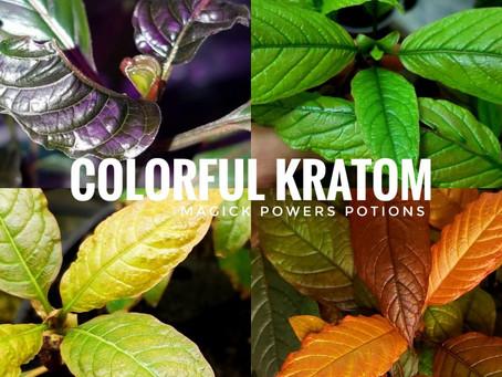 Colorful Kratom