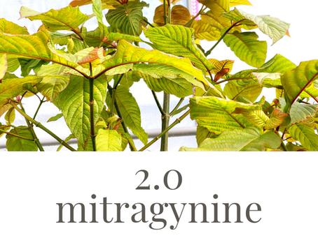 2.0% mitragynine in new American kratom line