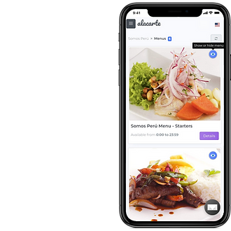 Iphone - menu management (segment).png