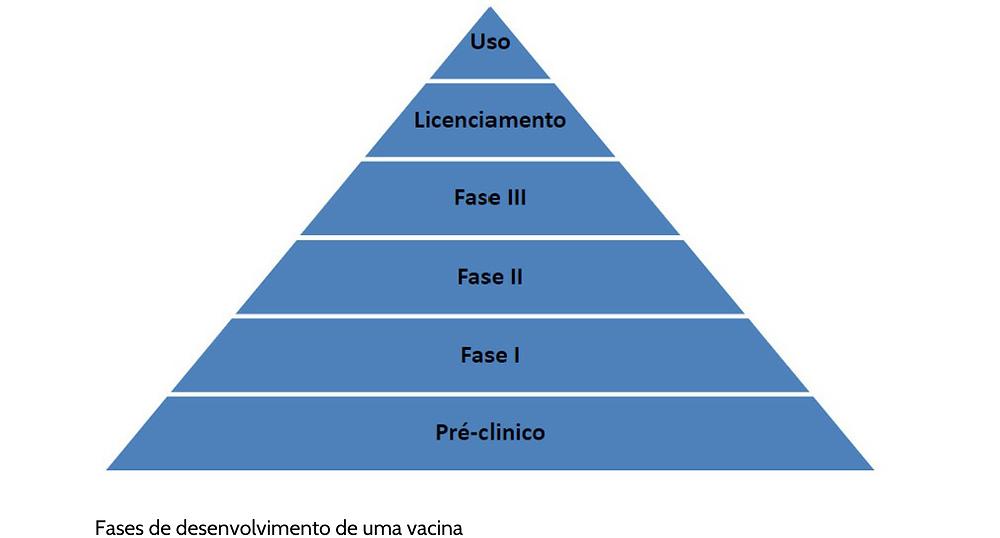 Figura 1 - Fases de desenvolvimento de uma vacina