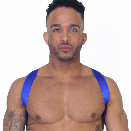 Leader - X Back Harness Blue