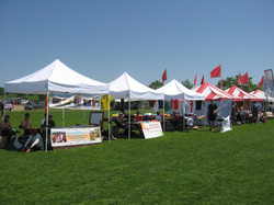 2010 Ultimate College Nationals