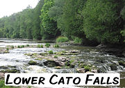 home-pic-cato.jpg