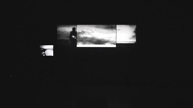 Des errances - Camille Pradon 2015