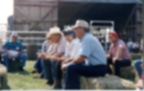 In 1995, the Martin Family hosted two stops on the Kansas Gelbvieh Association field day. Larry and Linda were founding members of the KGA and continue to be members today.