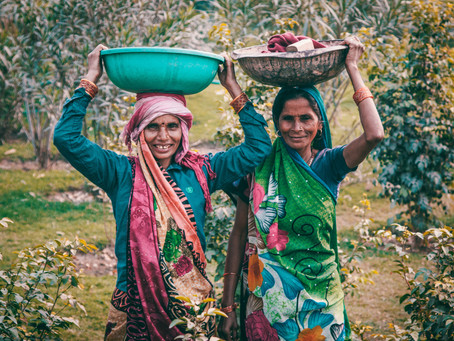 A tradition of contradictions : Indian Agriculture