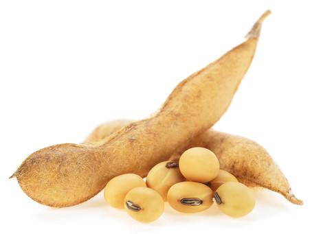 Soybean & Nutrition Security