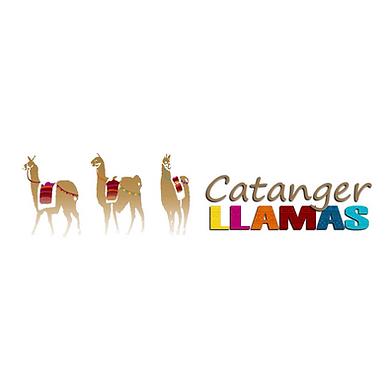 Catanger logo.png