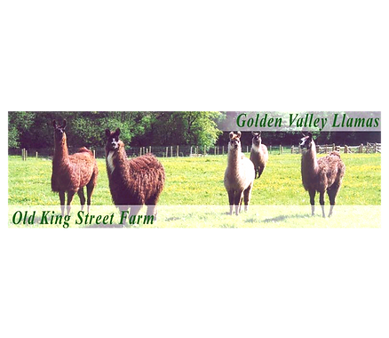 old king street farm ad.png