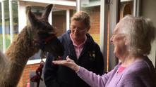 Pharaoh visits Lyncroft Care Home
